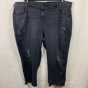Lane Bryant Girlfriend Crop Distressed Jeans 28